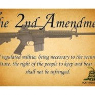 2Nd Amendment Quotes Delectable Second Amendment Quotations  Then And Now