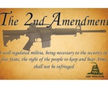 Second Amendment Quotes