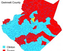 Gwinnett Election Results by Precinct