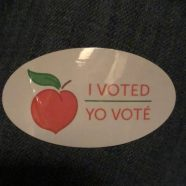 Safest Way to Vote