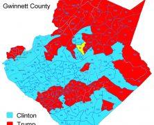Gwinnett Election Results by Precinct