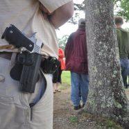 Guns in Gwinnett